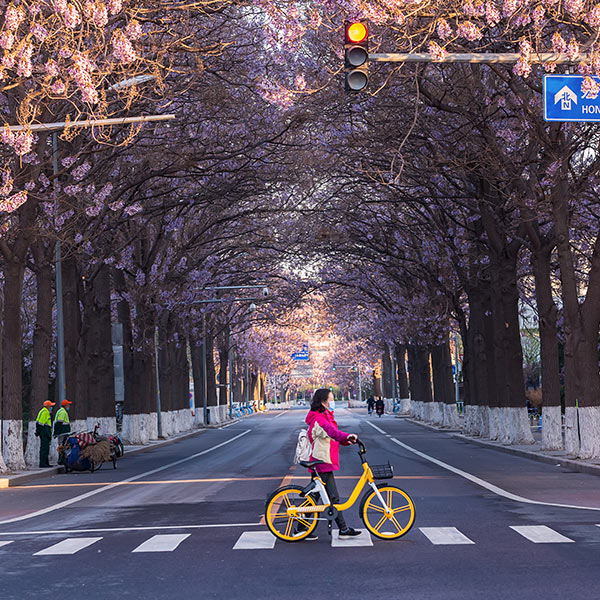 Beijing, China in spring, and women wearing masks cross the sidewalk
