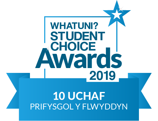 Welsh University of the Year (Top 10)