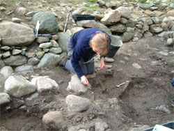 Excavating the remains of a dog skeleton