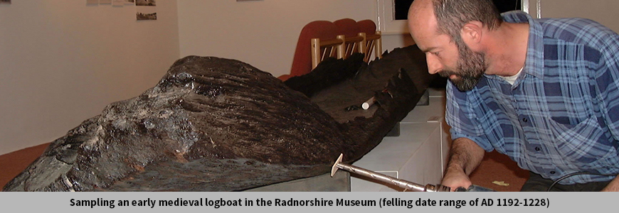 Sampling an early medieval logboat in the Radnorshire Museum (felling date range of AD 1192-1228)