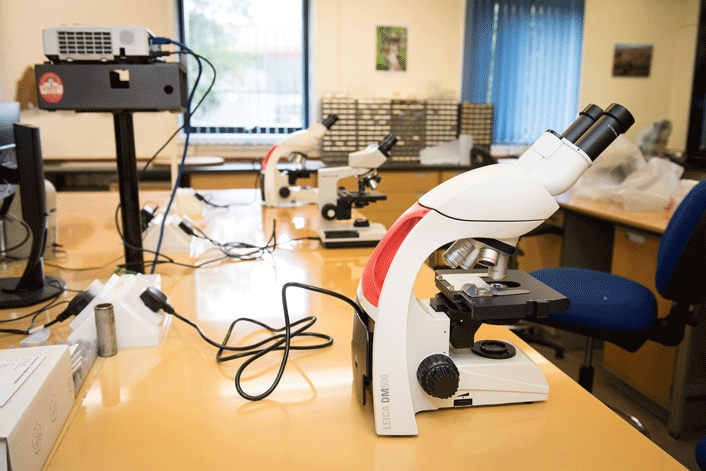 Lampeter teaching lab with microscopes